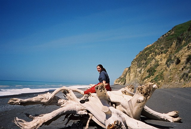 Kate atop a driftwood dragon