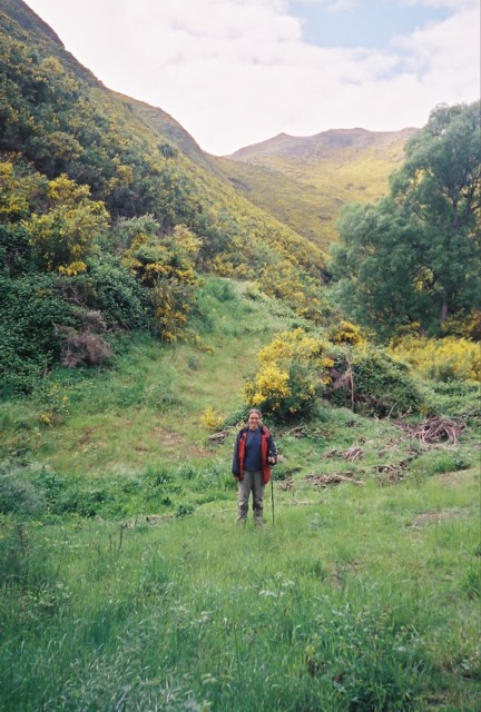 "Kate at the start of the Kaikoura Coast Track.  The yellow bush is called ""broom."""