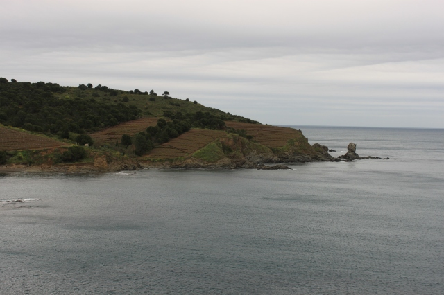 Looking across the bay from Banyuls-sur-Mer