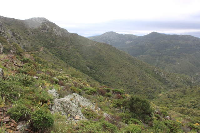The mountain pass to Portbou, Spain.
