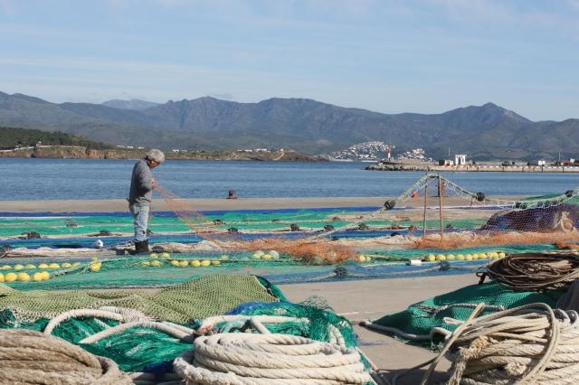 A fisherman plies in trade in Port de la Selva.
